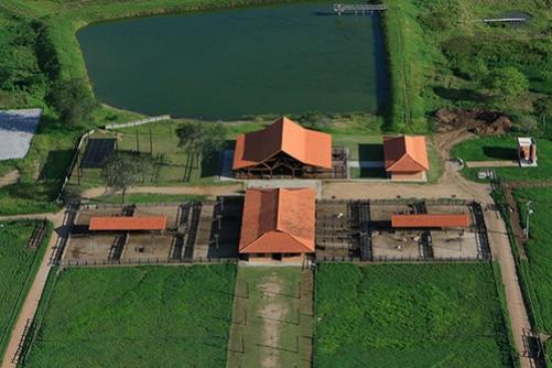 CAROATÁ - CENTRO DE MANEJOS